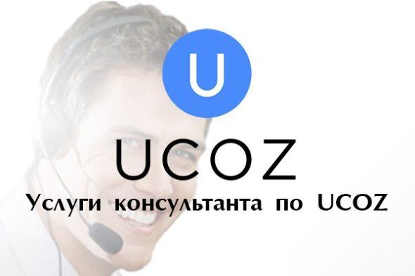 Консультации по созданию и продвижению сайта на UCOZ