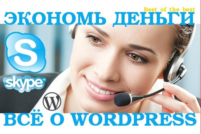 Консультация в Skype по продвижению вашего сайта на WordPress